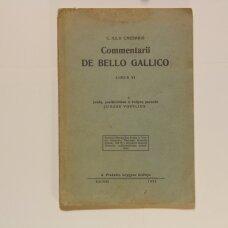 Commentarii de bello Gallico : Liber 6