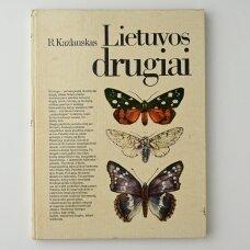 Lietuvos drugiai