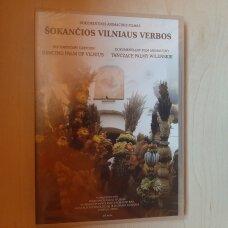 Šokančios Vilniaus verbos DVD